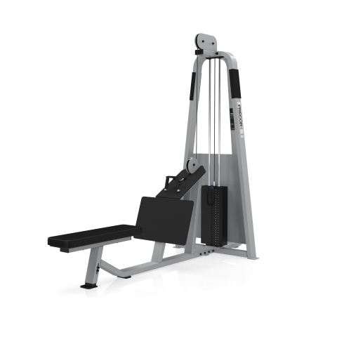 Ruderstation 302. Rückentrainer / Profi / Studiomodell von Precor.