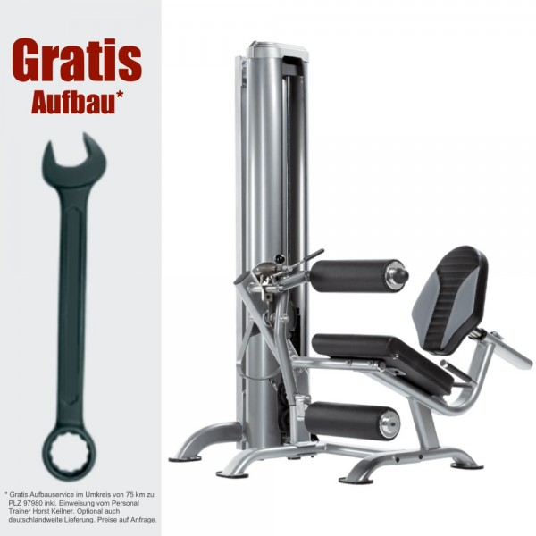 Apollo Curl Station AP-71LE inkl. Gratis Aufbau - Fitness Station